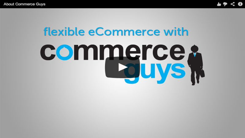The commerce Guys Story